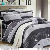 100%頂級奧地利純天絲床罩組八件式 《A011》