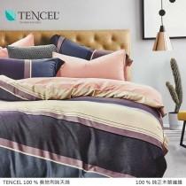 100%頂級奧地利純天絲床罩組八件式 《A072》