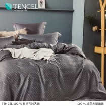 100%頂級奧地利純天絲床包枕套三件組《A074》