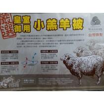 皇家御用小羔羊被(單人4.5*6.5)