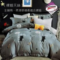 3M吸濕排汗X裸睡天絲床罩組《幻影》